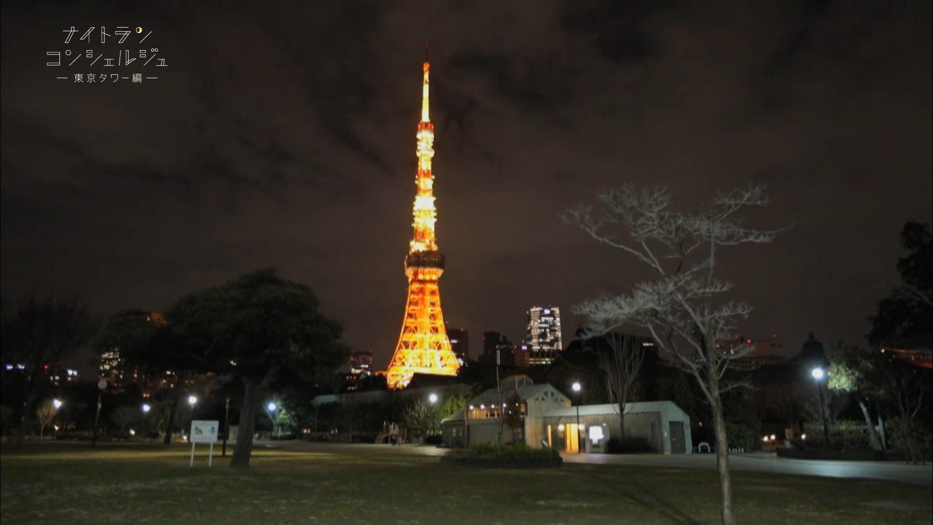 """ナイトランスポットで見つけた""""東京""""の横顔~東京タワー編~"""