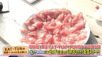 沖縄でマグロ大漁!『タメ旅+』でKAT-TUN「かめざんまい」をオープン