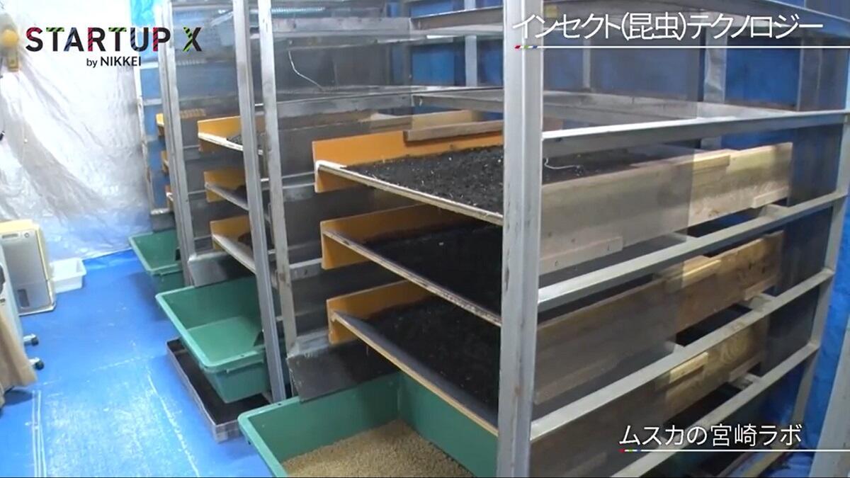 20200327_nikkei_09.jpg