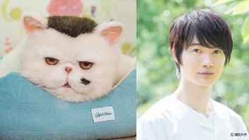 神木隆之介がふくまるの声を担当!草刈正雄主演ドラマ『おじさまと猫』