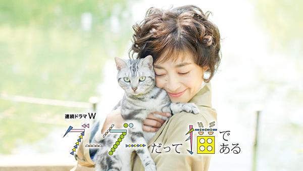 猫の日にピッタリ!さまざまなネコ日和を味わえるドラマ7選